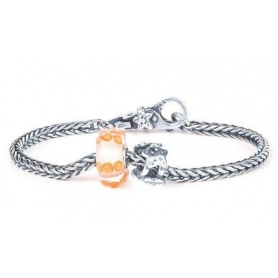 Trollbeads Summer Dream start bracelet