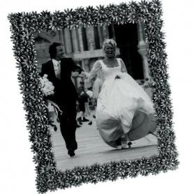 Rahmen Silber Gänseblümchen-1966