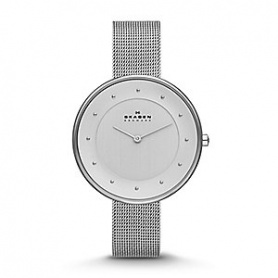 Skagen women's watch Gitte silver large-SKW2140