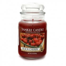 Candela Black Cherry - 1129749
