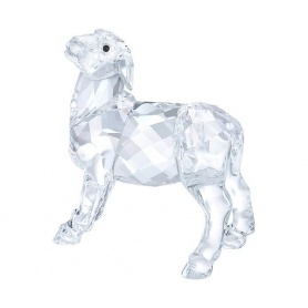 Swarovski Sheep Nativity - 5298145
