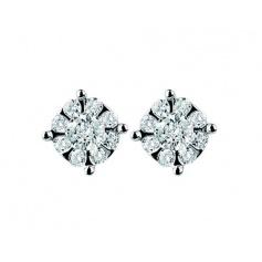 Brilliant earrings-20043898