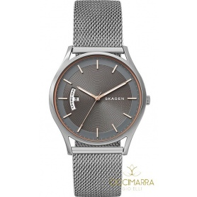 Skagen Holst Large watch SKW6396 gray