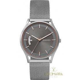 Skagen Holst Large watch SKW6396 gray