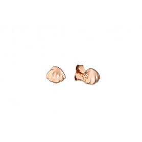 Earrings lobe Queriot Civita silver shell novità2018 gold
